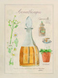 Aromatherapie, Camomille Posters por Laurence David