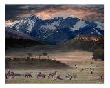 Wapiti Heaven Giclée-Druck von Bill Stephens