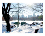 Central Park Snow, Lake and Manhattan Skyline Giclee Print by New Yorkled