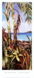 Palms and Bromeliads Posters by Deborah Thompson