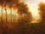 Line of Trees at Dawn Posters by Jim Mitchell
