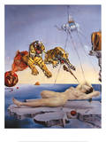 Droom veroorzaakt door de vlucht van een bij rond een granaatappel, ca. 1944 Print van Salvador Dalí