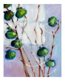 Green Persimmons Giclee Print by Ann Tuck