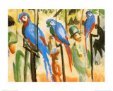 Parrots Posters by Auguste Macke