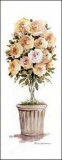 Rose Topiary Poster by Carol Robinson