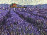 Lavender Fields I Póster por Lorraine Westwood