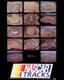 Nascar Tracks Posters by Mike Smith