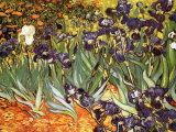 Irises, Saint-Remy, c.1889 Art by Vincent van Gogh