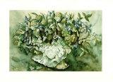Flower Aquarel I Poster von Elizabeth Veltman-Adriaansz