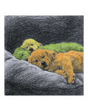 Sweet Dreams (lime, orange, yellow) Giclee Print by Evelyn Morris Hecht