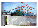 Wall Nassau Gicl&#233;e-Druck von Winslow Homer