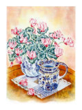 Cyclamen Prints by Denise