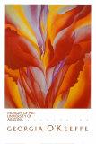 Röd kanna|Red Canna Posters av Georgia O'Keeffe