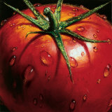 Tomato Art by Alma&#39;ch 