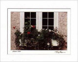 Window Box Prints by Tony Casper
