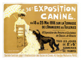36e&#160;exposition canine de Briard Reproduction proc&#233;d&#233; gicl&#233;e par Edouard Doigneau