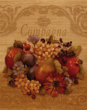 Compagna Print by Pamela Gladding