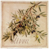 Olivea Art by Vincent Jeannerot
