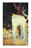 The White Cat Gicleetryck av Pierre Bonnard