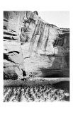 Navajo Farming Giclee Print by Edward S. Curtis