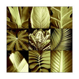 Tropical Leaves II Prints by Caroline Kelly