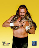 "Jake ""The Snake"" Roberts Photo"