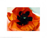 Coquelicots Posters par Georgia O'Keeffe