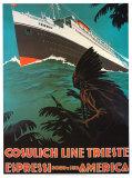 Cosulich Line Trieste Print by A. Dondou