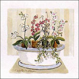 Orchid Tub Poster by Charlene Winter Olson