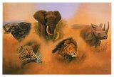 Otro elefante Láminas por Clive Kay