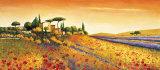 Campo a la luz del sol Pósters por Richard Leblanc