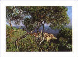 Bordighera, 1884 Poster por Claude Monet