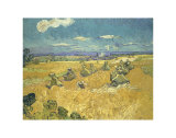 The Wheat Field, c.1888 Art by Vincent van Gogh