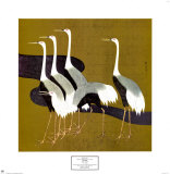 Cranes Prints by Sakai Hoitsu