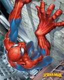 Spider-man - Climbing Juliste
