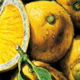 Limones Lámina por Alma'ch