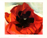 Poppy Posters by Georgia O&#39;Keeffe