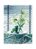 Fenster mit Lilien Prints by Franz Heigl