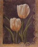 Twin Tulip I Print by Rumi 