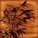 Bamboo Waves II Prints by Thomas Kalwa