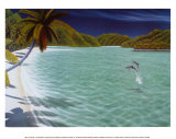 Trunk Bay Art by Dan Mackin