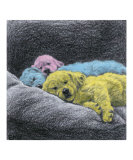 Sweet Dreams (pink, blue, yellow) Giclée-Druck von Evelyn Morris Hecht