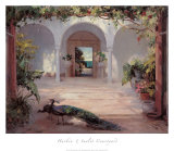 Haibin - Sunlit Courtyard Obrazy
