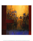 Iris Sunrise Prints by Don Li-Leger