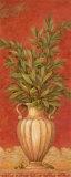 Rêverie toscane II Affiches par Pamela Gladding