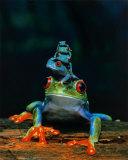 Frosker Plakat