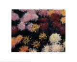 Chrysanthemum, 1897 Print by Claude Monet