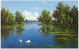 River with Swans I Art by  Slava