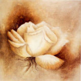 White Rose I Print by Betty Jansma