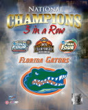 Florida Gators Photo
